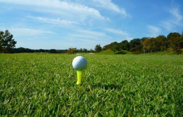 ゴルフストレッチのチェックシートの内容を新しくしました。