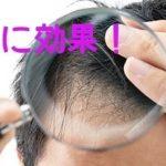 育毛に効果のある成分「銅ペプチド」増やす方法!!
